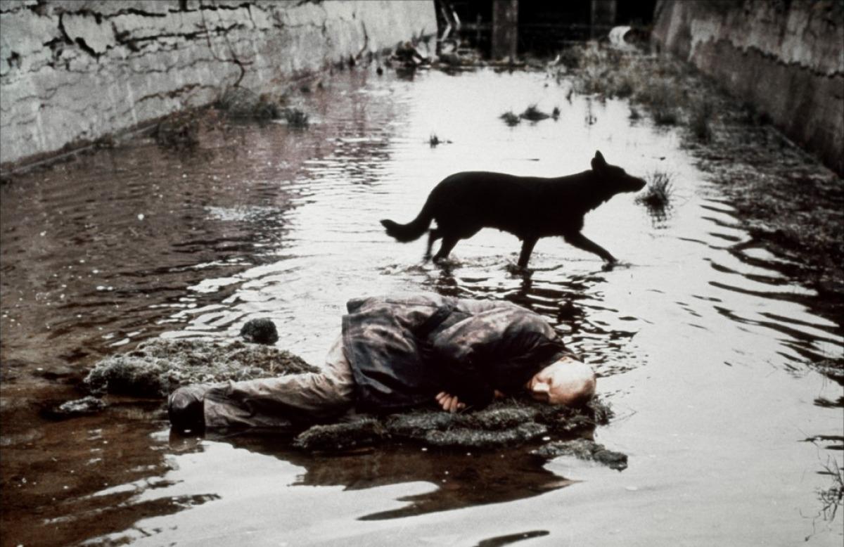 «Stalker» (Andrei Tarkowski, 1979).